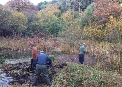volunteers, people clearing plant matter, undercliffs